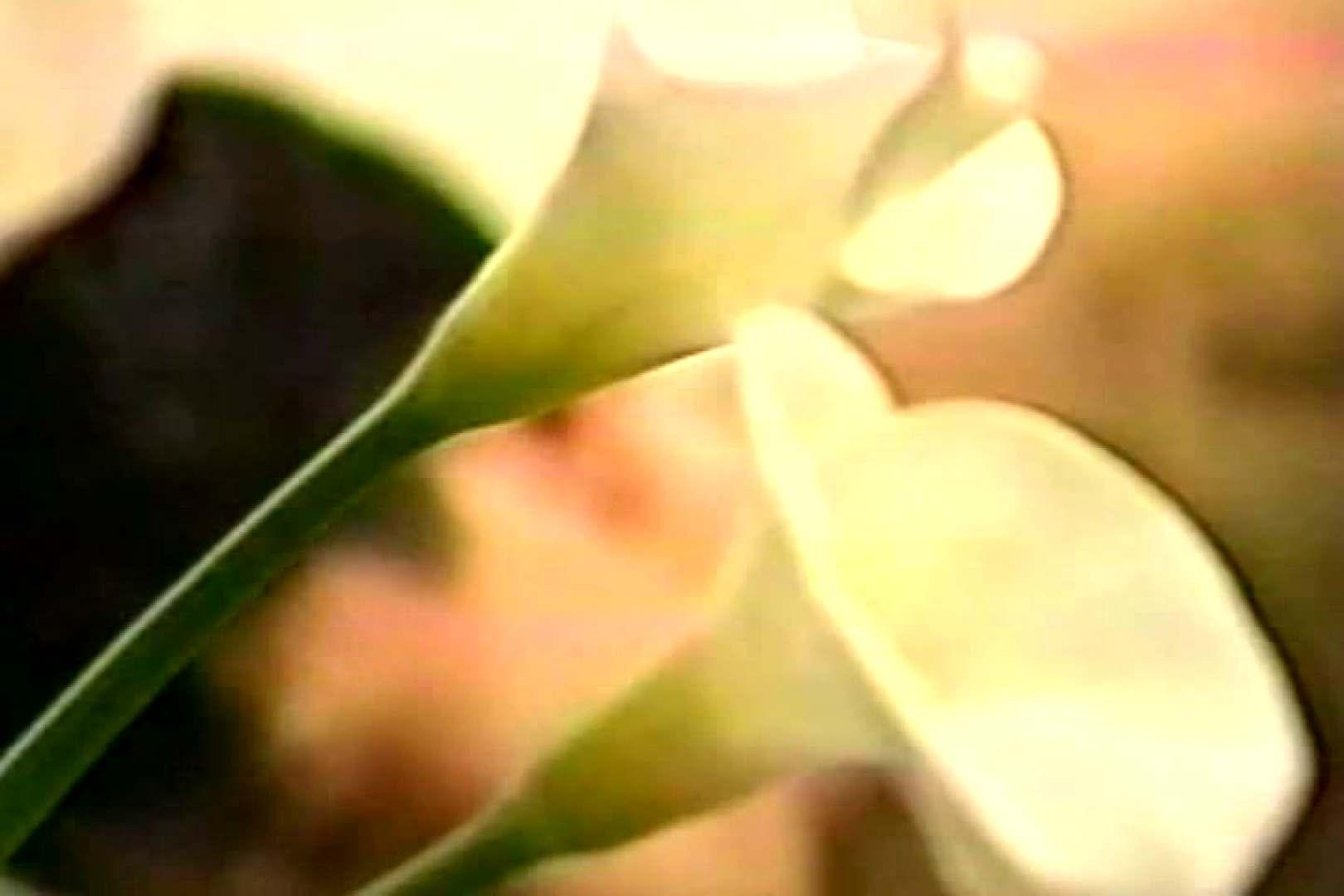 往年の名作 あの頃は若かった!Vol.02 エロ特集 ゲイセックス画像 105pic 11