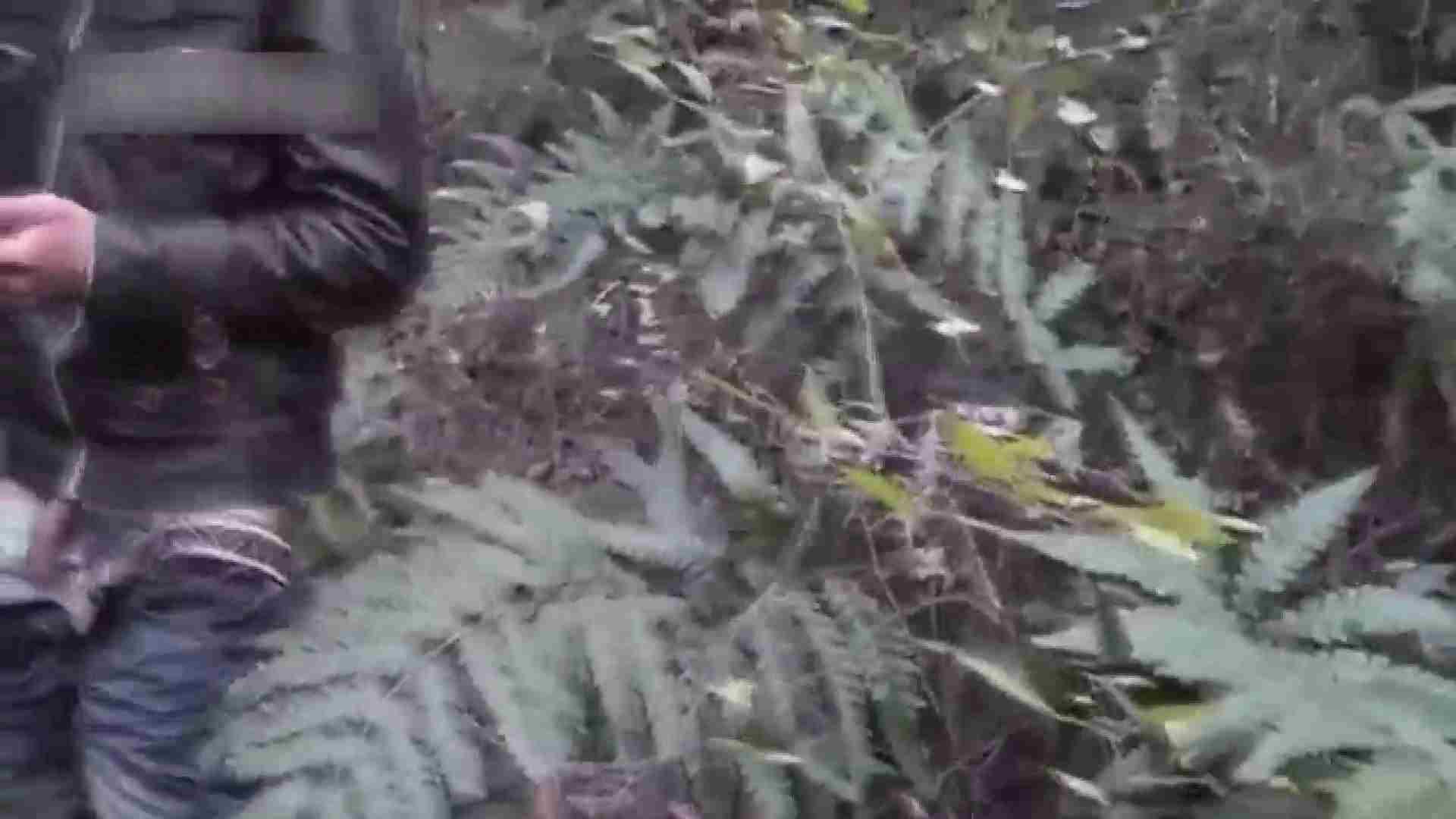 草原の中のオナニー 野外露出動画 | オナニー ゲイ素人エロ画像 102pic 28